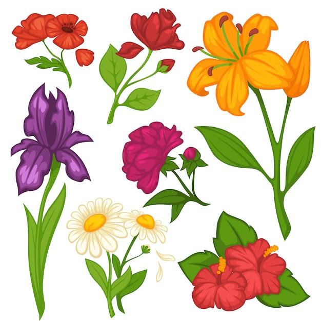 Fleurs Fleurs Vectorielles Plats Isolés Ensemble Vecteur Premium