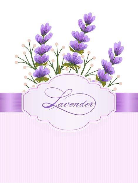 Fleurs De Lavandula. Fleurs De Lavande Sur Fond Avec Une élégante Calligraphie Manuscrite. Vecteur gratuit