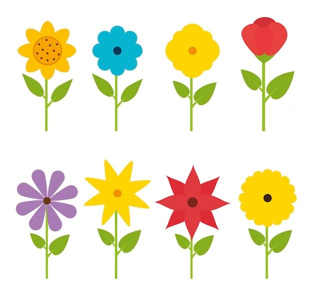 Fleurs Et Motifs Floraux. Vecteur Premium