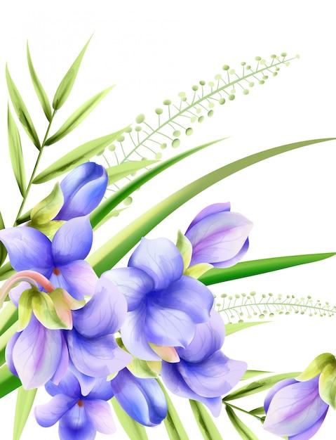 Fleurs De Printemps Aquarelle Gloire Du Matin Avec Des Feuilles Vertes Vecteur Premium