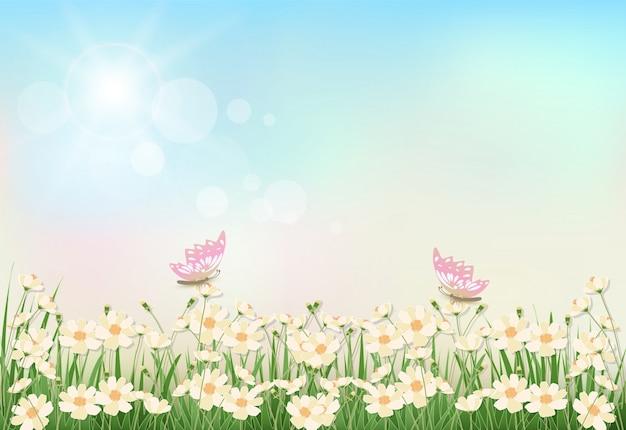 Fleurs De Printemps Cosmos Vecteur Premium