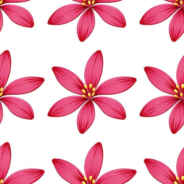 Fleurs sans couture isolés sur blanc Vecteur gratuit