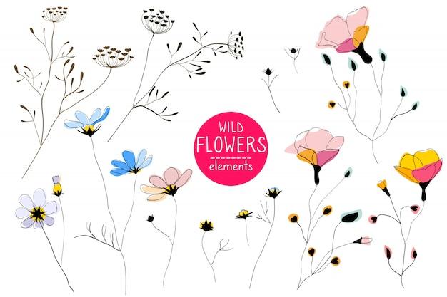 Fleurs sauvages, éléments d'art en ligne Vecteur Premium