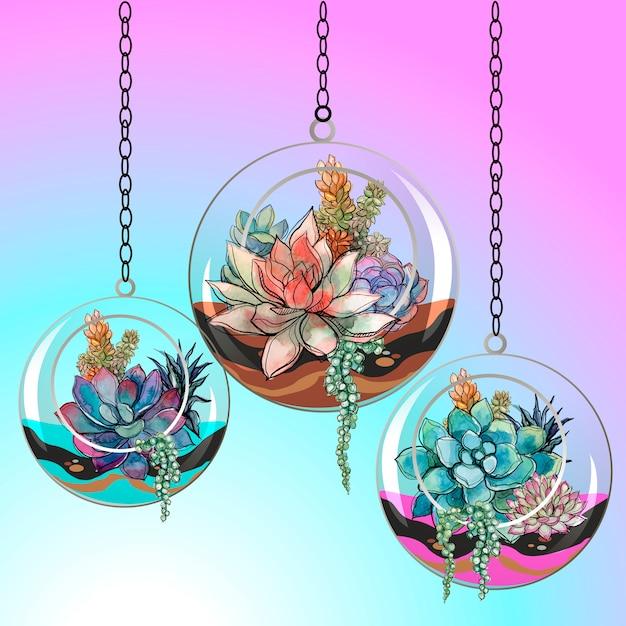 Fleurs succulentes en pots de verre. vecteur. Vecteur Premium