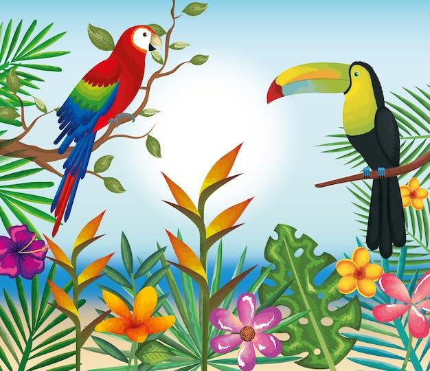 Résultats de recherche d'images pour «toucans perroquets»