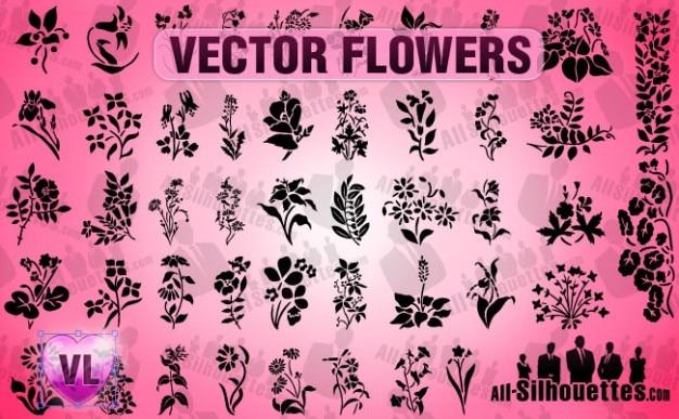 fleurs vectoriel Vecteur gratuit