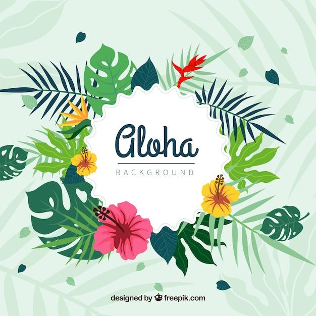 Free Aloha Pirn