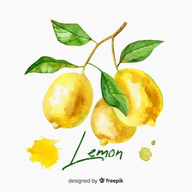 Fond d'aquarelle citron Vecteur gratuit
