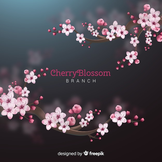 Fond d'arbre de fleurs de cerisier Vecteur gratuit