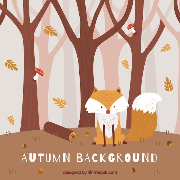 Fond d'automne avec mignon renard dans la forêt Vecteur gratuit