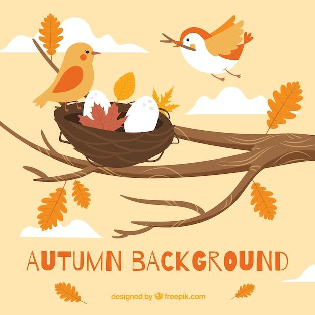 Fond D'automne Avec Des Oiseaux Vecteur gratuit