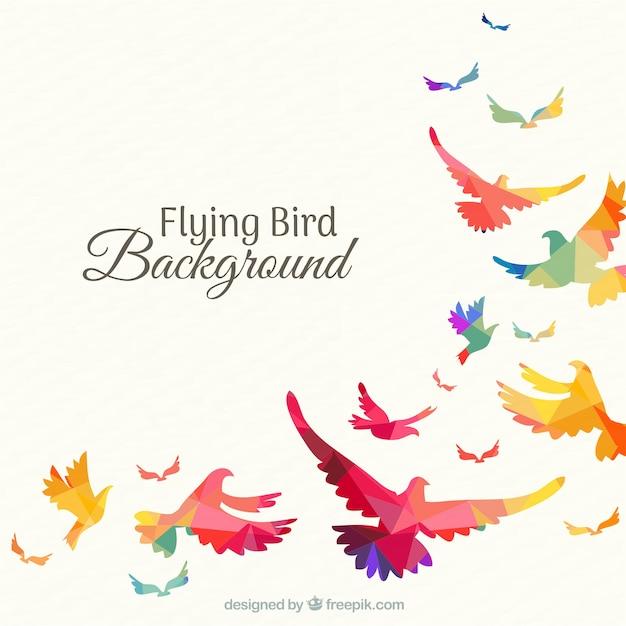 Fond avec des oiseaux colorés Vecteur gratuit