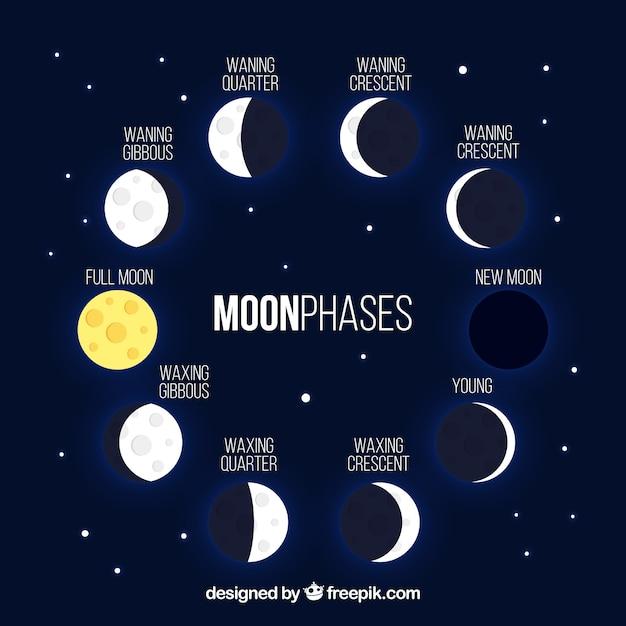 Fond bleu foncé avec des phases de lune brillant Vecteur gratuit