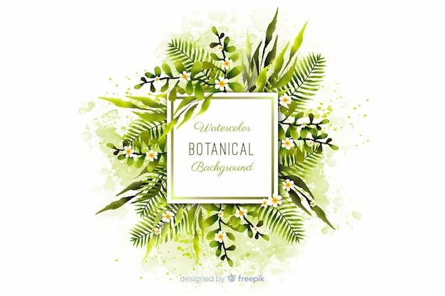Fond botanique Vecteur gratuit