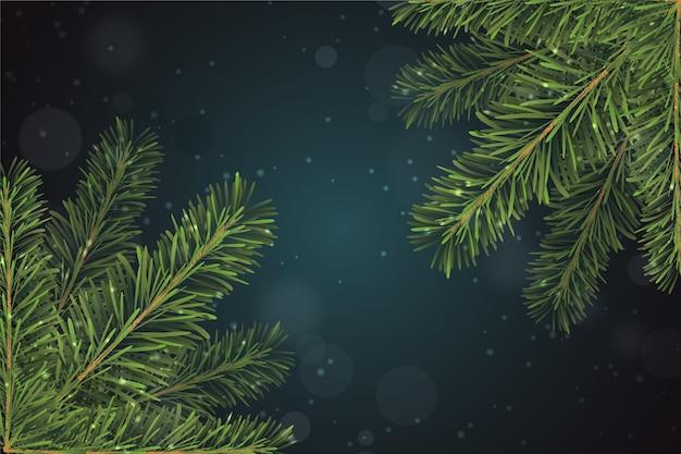 Fond De Branches De Sapin De Noël Réaliste Vecteur gratuit