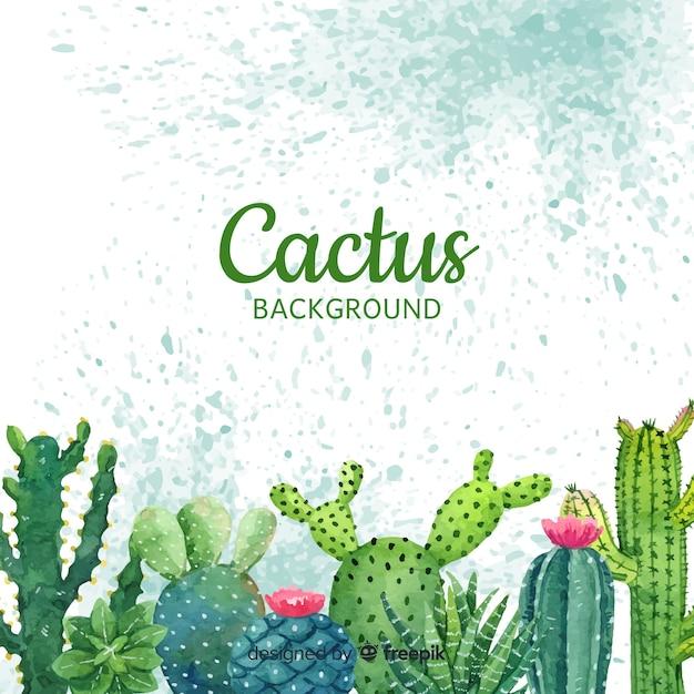 Fond de cactus Vecteur gratuit