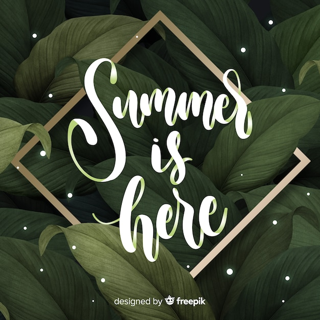 Fond calligraphique de l'été Vecteur gratuit