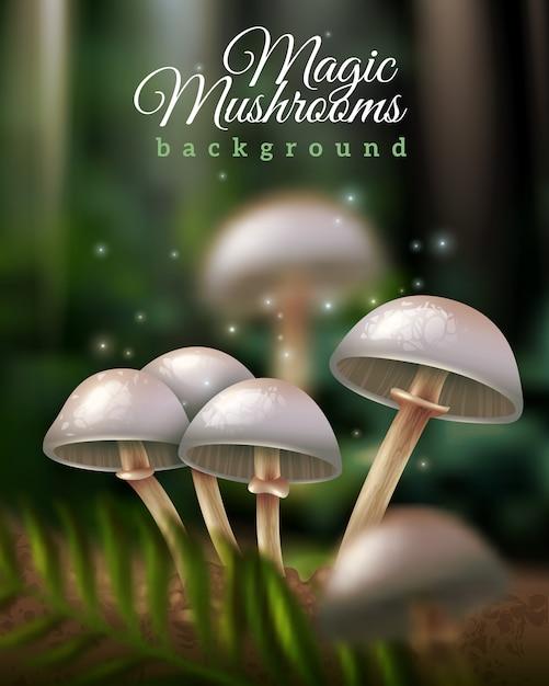 Fond de champignons magiques Vecteur gratuit
