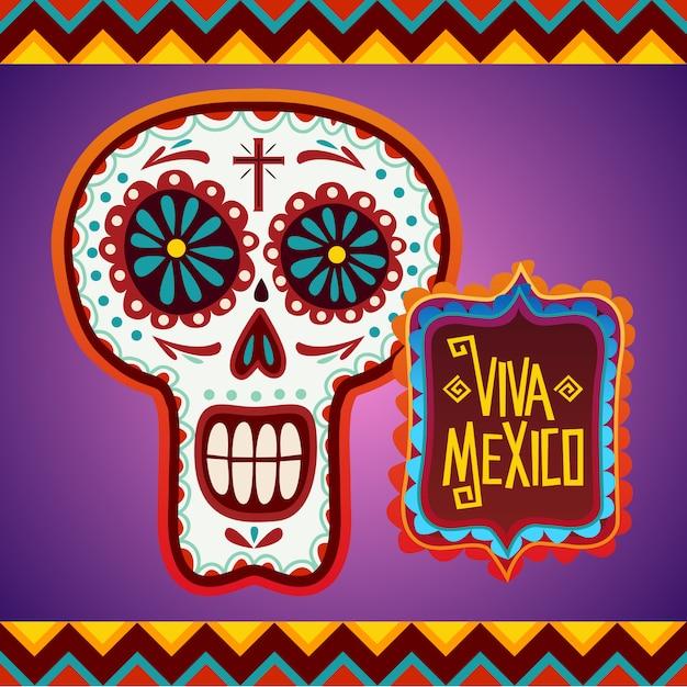 Fond de crâne mexicain Vecteur Premium