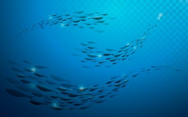 Fond Du Monde Sous-marin Pour La Conception. Vecteur Premium