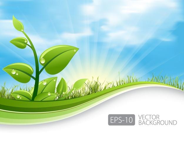 Fond D'écologie Des Feuilles Vertes Vecteur Premium