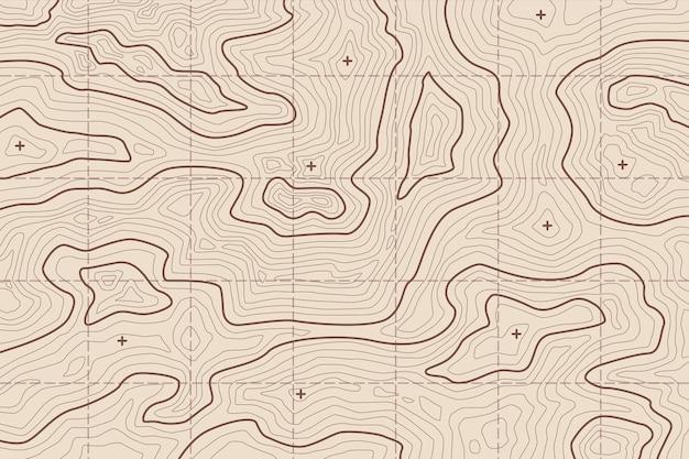 Fond D'écran Avec Concept De Carte Topographique Vecteur gratuit