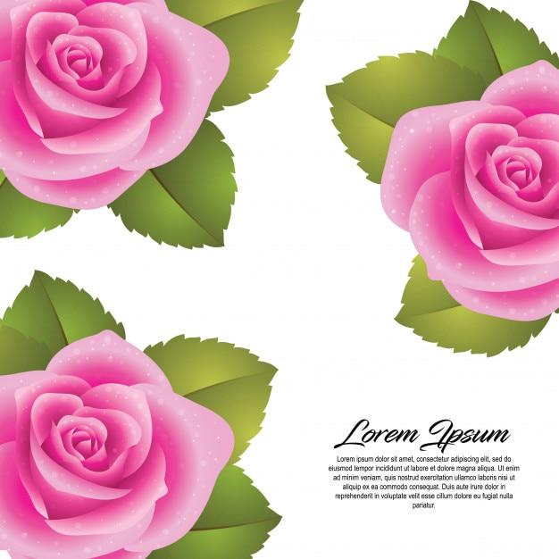 Fond D Ecran Fleur Rose Frais Telecharger Des Vecteurs Premium