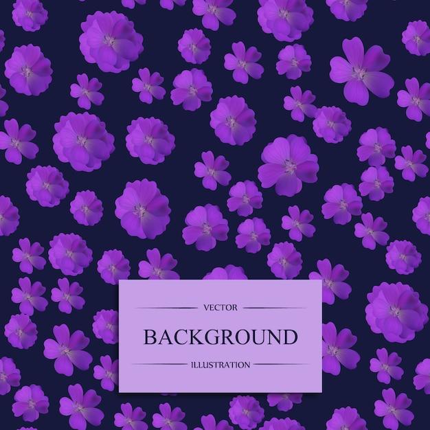 Fond D Ecran Des Fleurs Violettes Telecharger Des Vecteurs