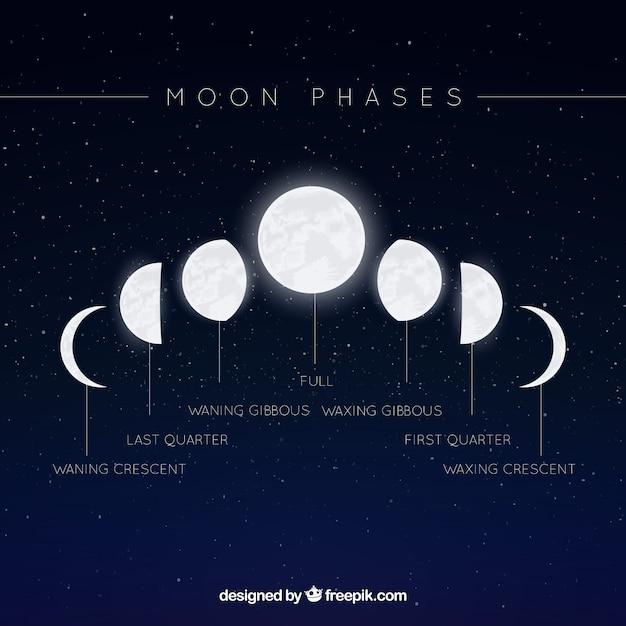 Fond étoilé Avec Des Phases De Lune Vecteur gratuit