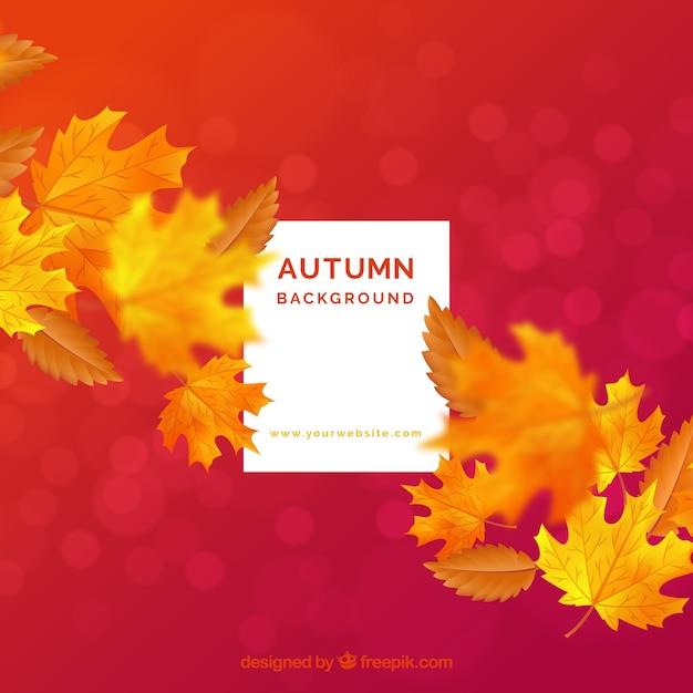 Fond avec feuille d'automne Vecteur gratuit
