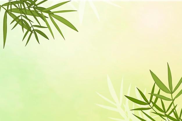 Fond de feuille de bambou Vecteur gratuit