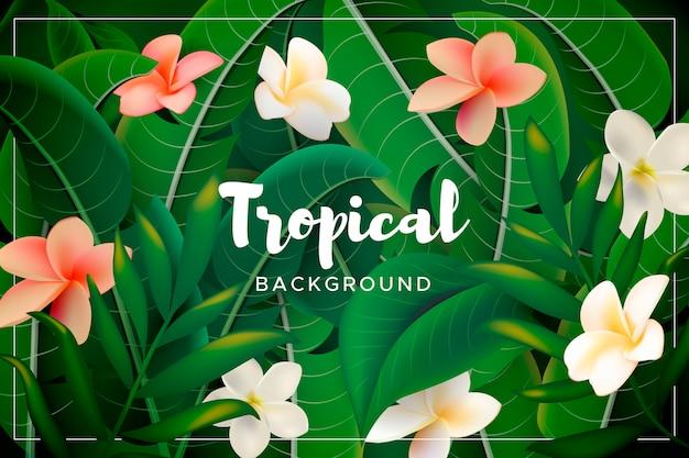Fond avec des feuilles et des fleurs tropicales Vecteur gratuit