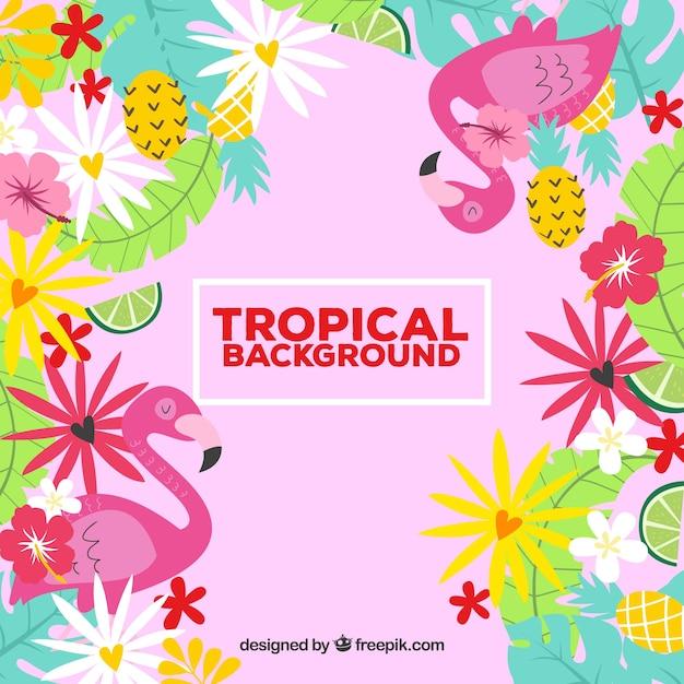 Fond de feuilles tropicales colorées Vecteur gratuit