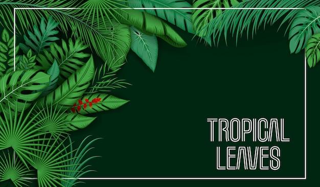 Fond De Feuilles Tropicales Avec Des Plantes De La Jungle Vecteur Premium