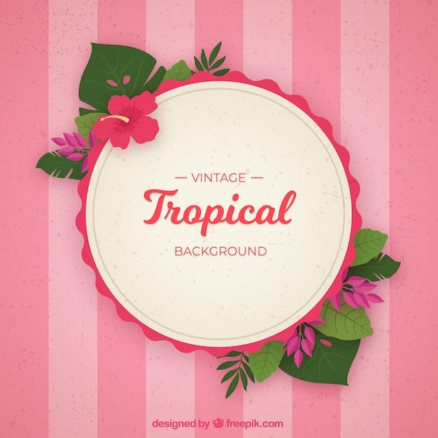 Fond de feuilles tropicales vintage Vecteur gratuit