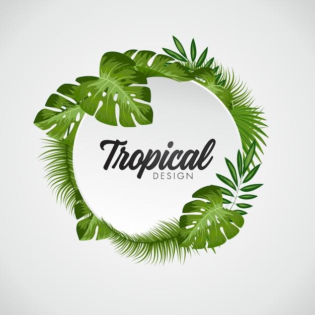 Fond De Feuilles Tropicales Vecteur gratuit
