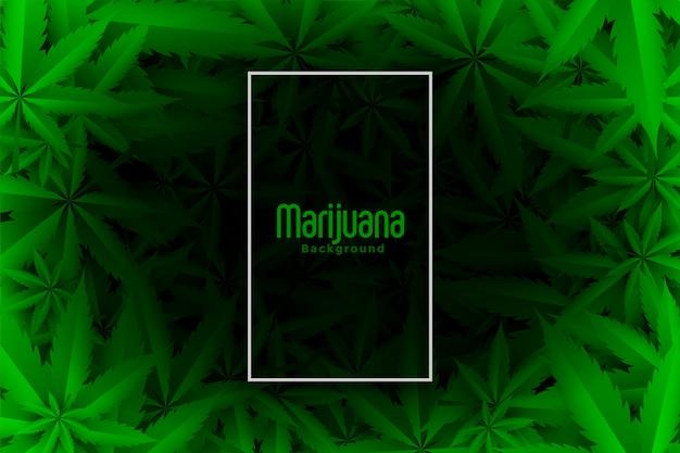 Fond De Feuilles Vertes De Cannabis Ou De Marijuana Vecteur gratuit