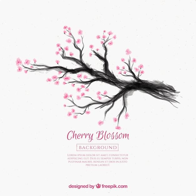 Fond De Fleur De Cerisier Avec Dessin A L Encre Telecharger Des