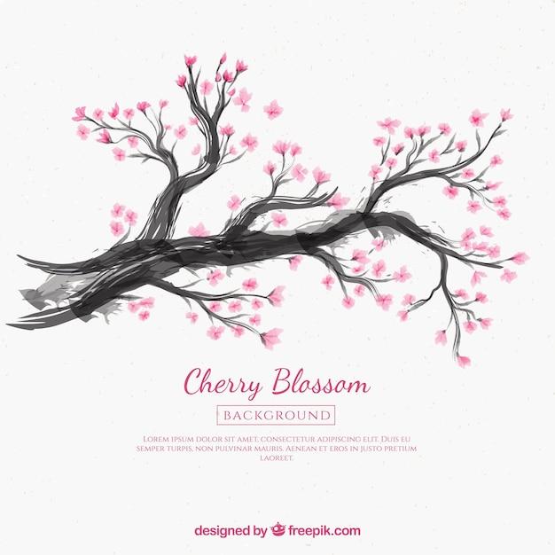 Fond De Fleur De Cerisier Avec Dessin A L Encre Vecteur Gratuite