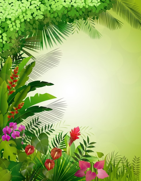 Fond de forêt tropicale exotique Vecteur Premium