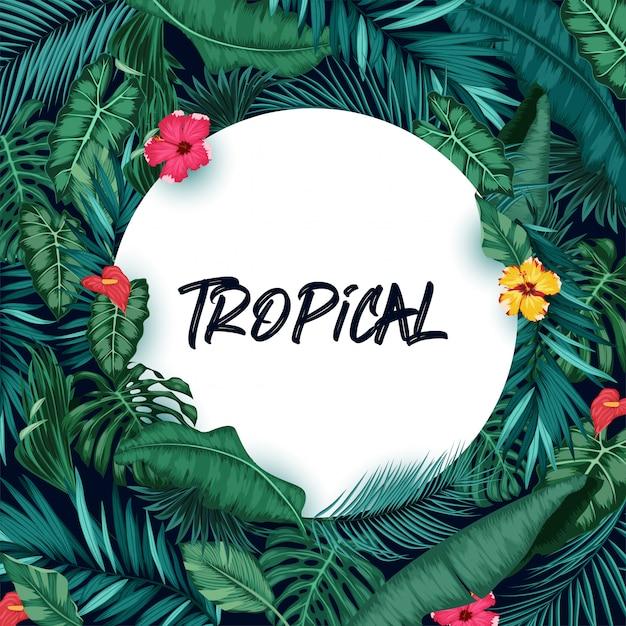 Fond De Forêt Tropicale Avec Papier Rond Vecteur Premium
