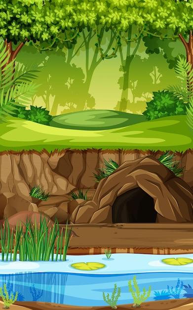 Un fond de forêt tropicale Vecteur Premium