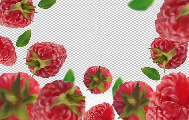 Fond De Framboise. Framboise Volante Avec Feuille Verte. Framboise Tombant Sous Différents Angles. Motion Framboise Fruits Sont Entiers.illustration Vectorielle Vecteur Premium