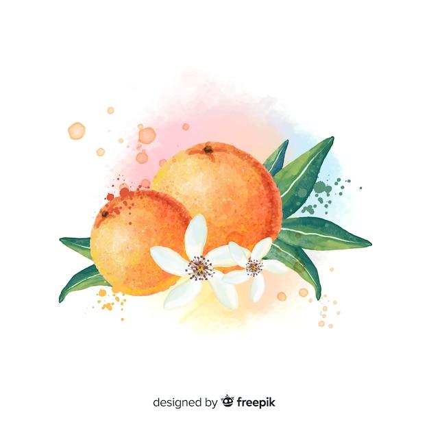 Fond de fruits aquarelle avec des oranges Vecteur gratuit