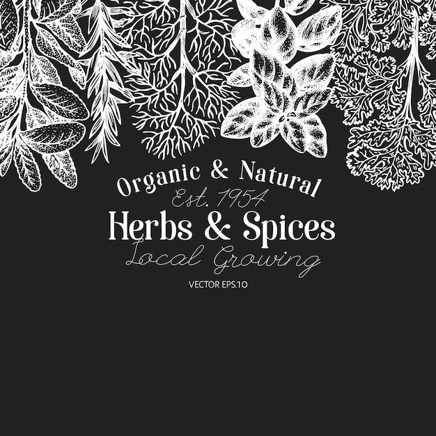 Fond D'herbes Et D'épices Culinaires. Main Dessinée Illustration Botanique Rétro à Bord De La Craie. Vecteur Premium