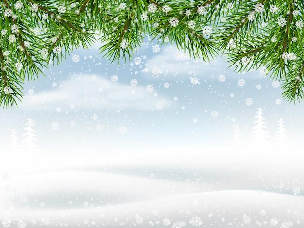 Fond d'hiver avec des branches de pin Vecteur Premium