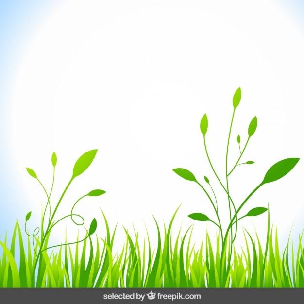 Fond naturel avec l 39 herbe verte t l charger des vecteurs for Fond de page word gratuit