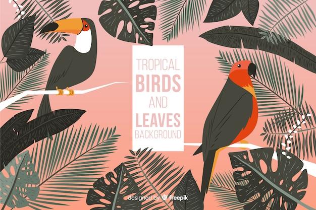 Fond d'oiseaux et de feuilles tropicales dessinés à la main Vecteur gratuit