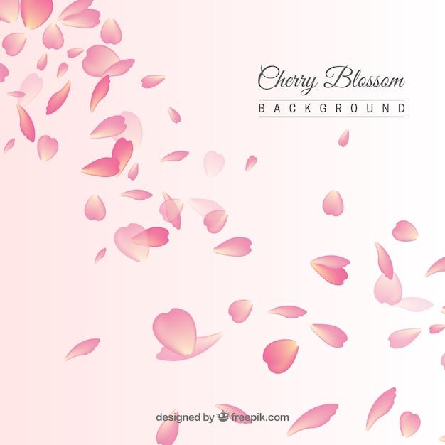Fond Avec Des Pétales De Fleurs De Cerisier Vecteur Premium