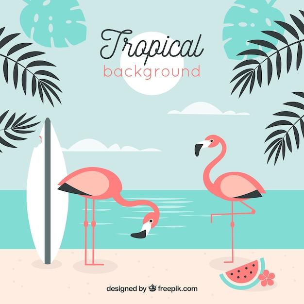 Fond de plage tropicale Vecteur gratuit